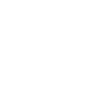 Karastan Carpet | McCurleys National Flooring