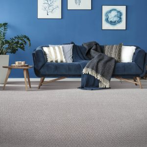Blue couch on Carpet flooring | McCurleys National Flooring